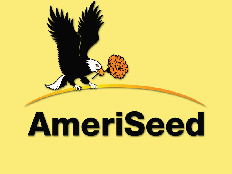 AmeriSeed test - Home
